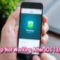 Fix WhatsApp Not Working After iOS 13/13.1 Update